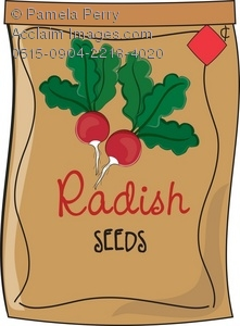 Seed clipart seed packet Packet Radish Packet Clip Seeds