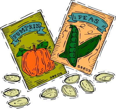Seed clipart seed packet Need Grows Seed City for