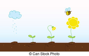 Seed clipart stage Growing growing plant art Stages