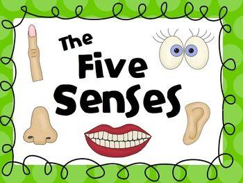Sensen clipart common sense Senses Pinterest Best ideas Five