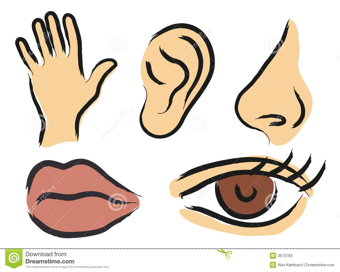 Finger clipart sense touch China Clipart Sensory Clipart cps