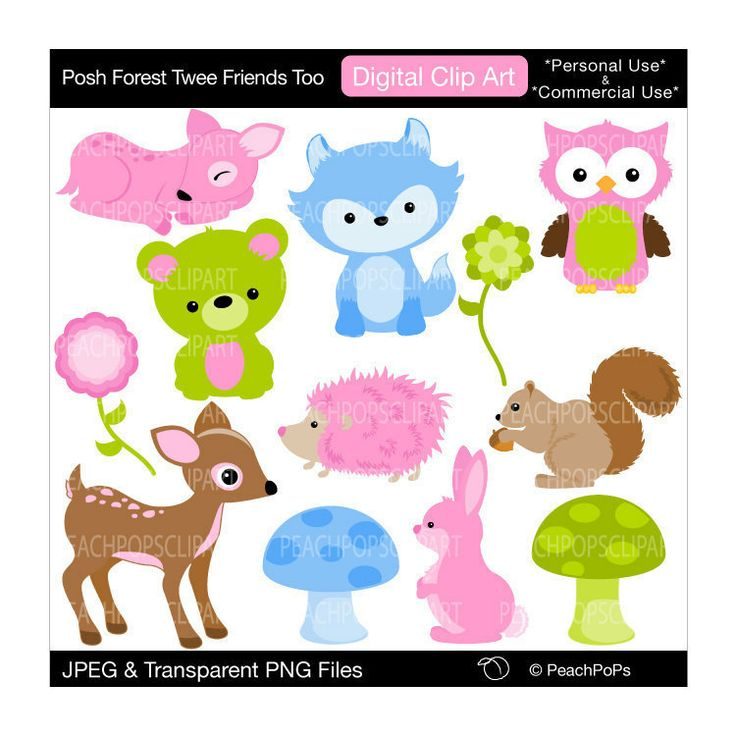 Owlet clipart friend Pinterest clipart clipart and owl