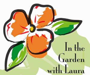 Serene clipart pond plant With constantly plants In Laura