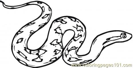 Serpent clipart coloring Pages Page Rattle Coloring