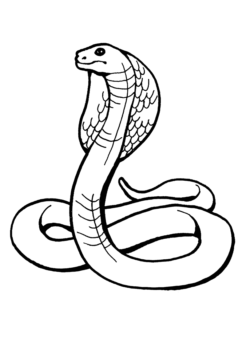 Serpent clipart coloring Pictures Snake Kids Pages For