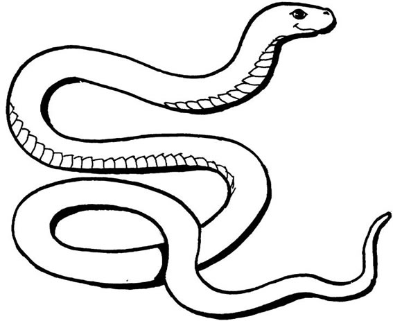 Serpent clipart coloring Printable for snake free gianfreda
