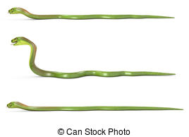 Serpent clipart crawl Drawing stock background seriesSee this