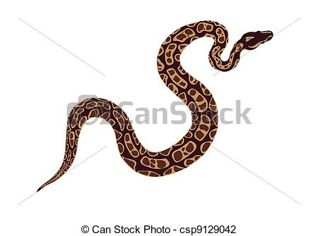 Realistic clipart snake #5