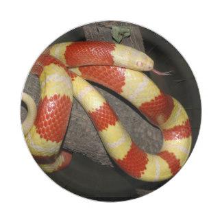Serpent clipart serpiente T inch Shirts Serpiente Gifts