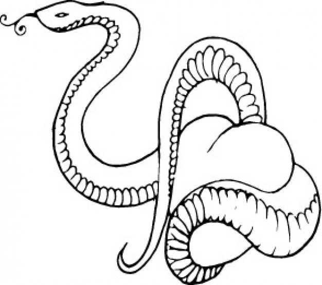 Serpent clipart snake head Snake Art Cliparts Head Zone