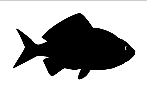 Shadow clipart fish #14