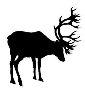 Caribou clipart animal Stickers Image Pinterest 92 Result