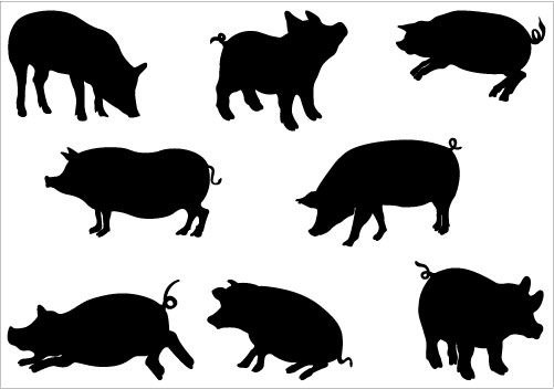 Shadow clipart pig #11