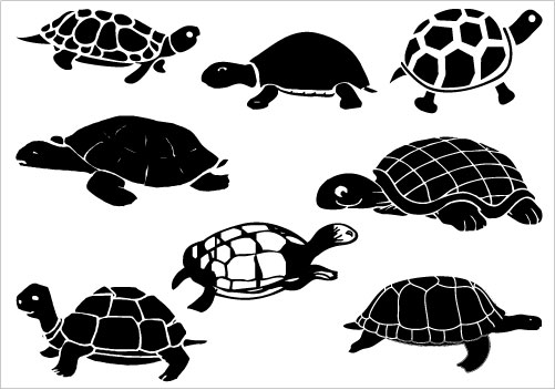 Turtle clipart vector #1