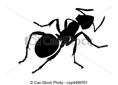 Shaow clipart ant Ant  Clip Vector Ant