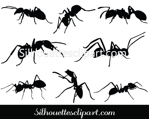 Shaow clipart ant Download Ant Silhouette Silhouette