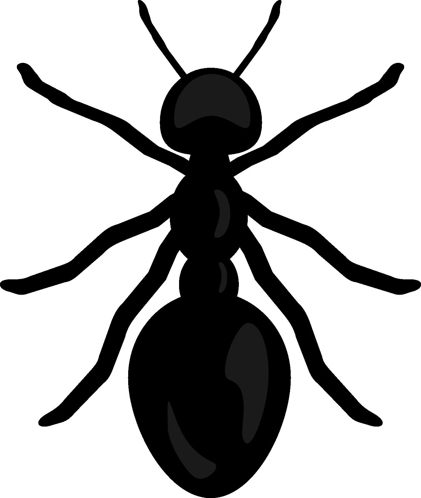 Shaow clipart ant Art  Clip Mixed