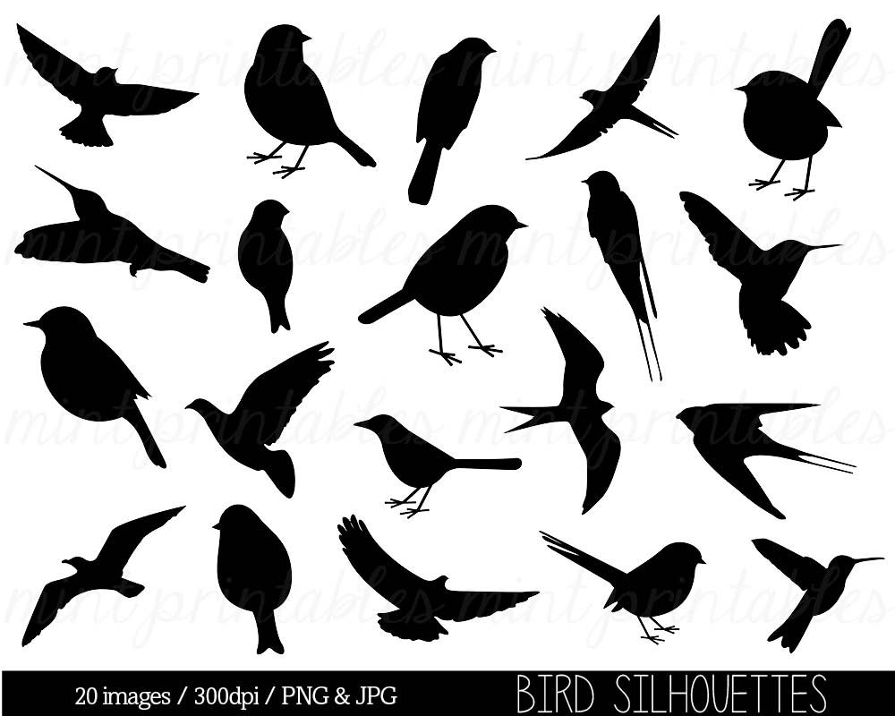 Blackbird clipart cute Silhouette Free on  Download