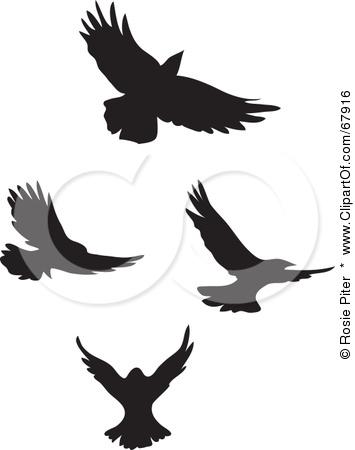 Blackbird clipart flying crows Flying Silhouette Clipart Crow silhouette