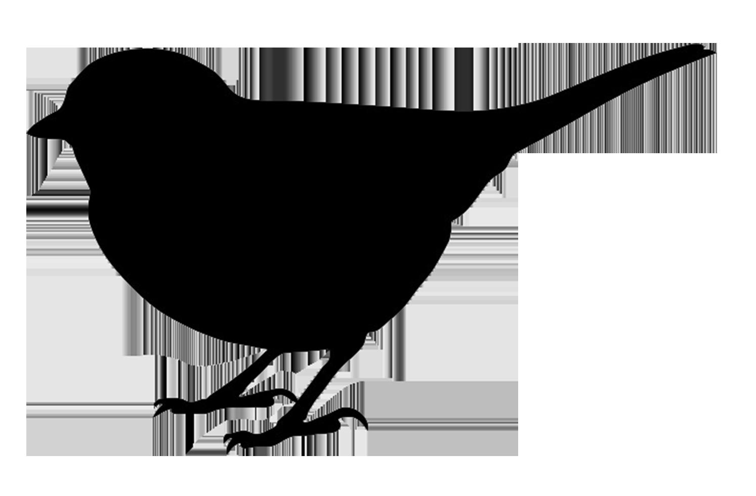 Bird clipart small bird Art Bird Bird Art Clip