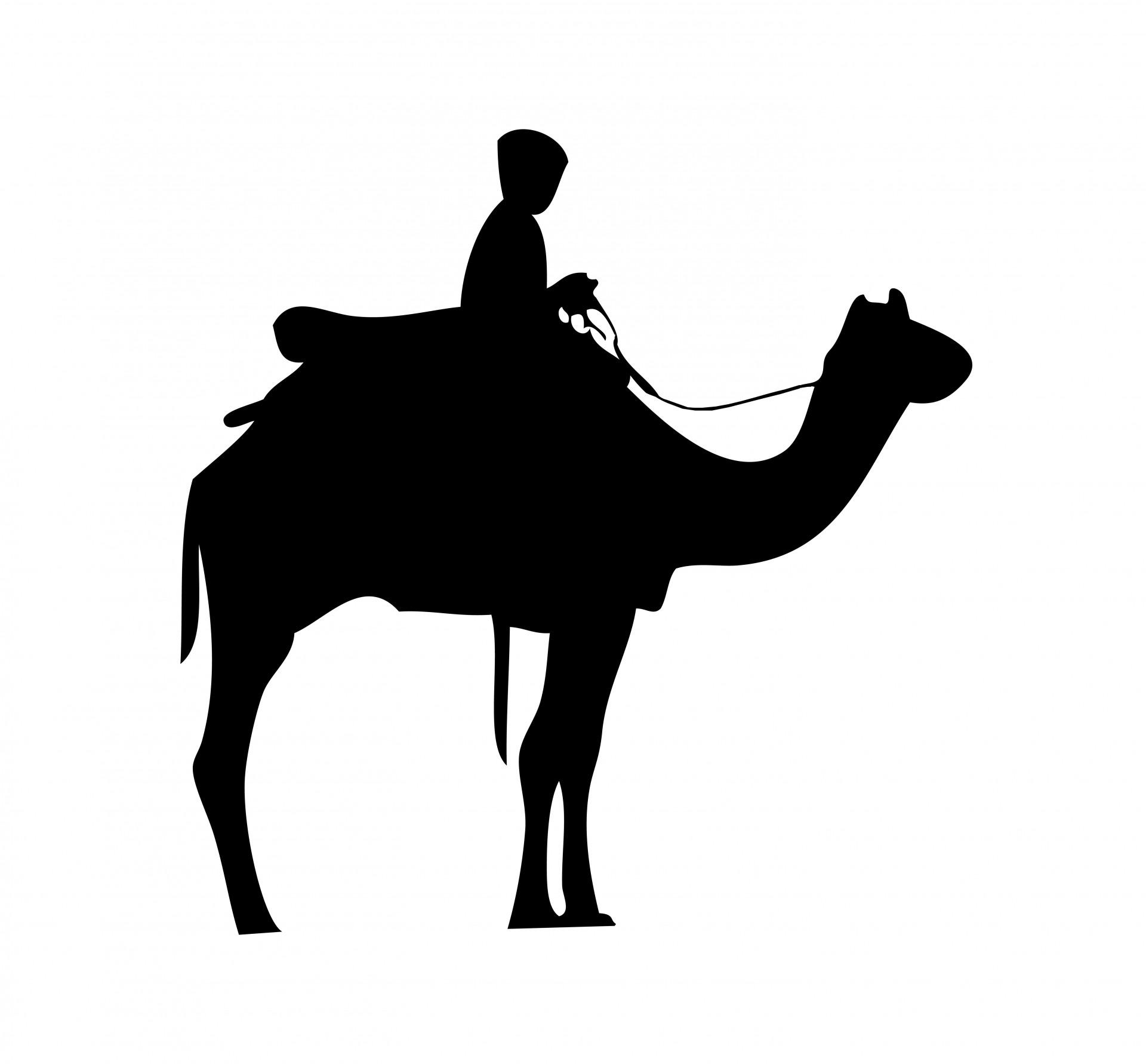 Camel Caravan clipart silhouette Clipart Back Rider Public Silhouette