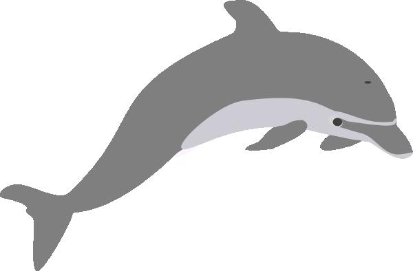Bottlenose Dolphin clipart illustration Art clipart art outline Dolphin