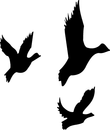 Shaow clipart duck Flying Clipart Clipart Free Images