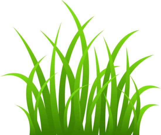 Shaow clipart grass Tall best Pinterest Grass out