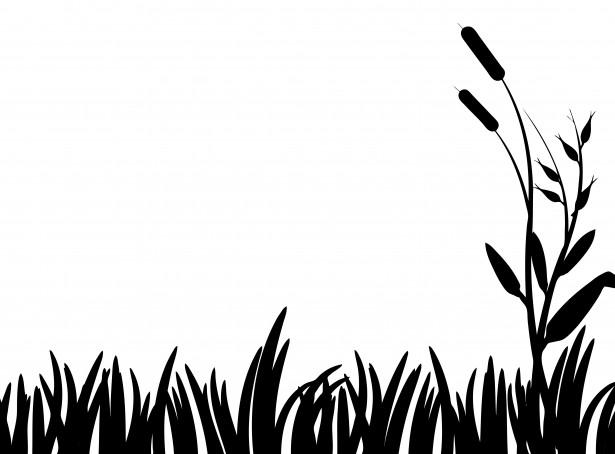 Shaow clipart grass Grass photo Art free Clipartix