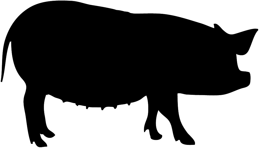Shadow clipart pig #12