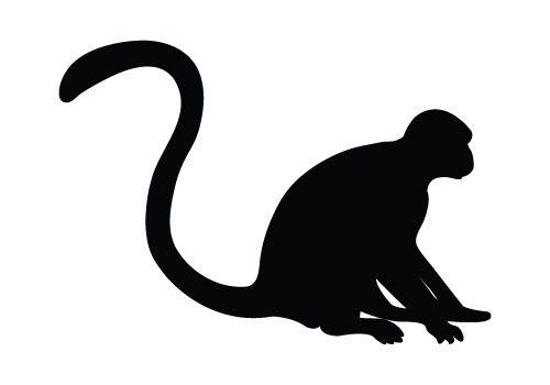 Shadows clipart monkey Photo#5 monkey silhouette Sitting Monkey