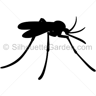 Shadow clipart mosquito #7