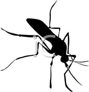 Shadow clipart mosquito #3