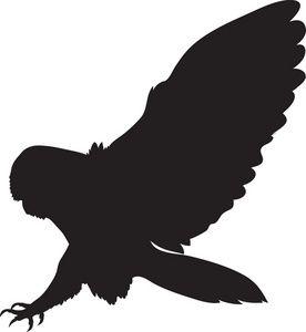 Brown Hawk Owl clipart harry potter owl Wrist? on ideas 25+ Owl