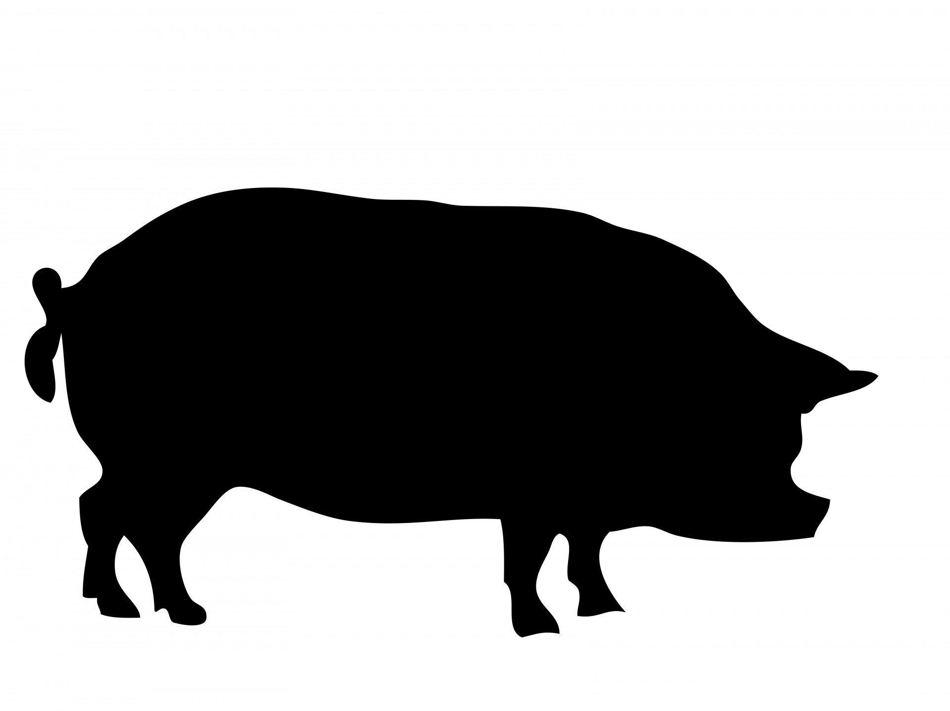Shadow clipart pig #2