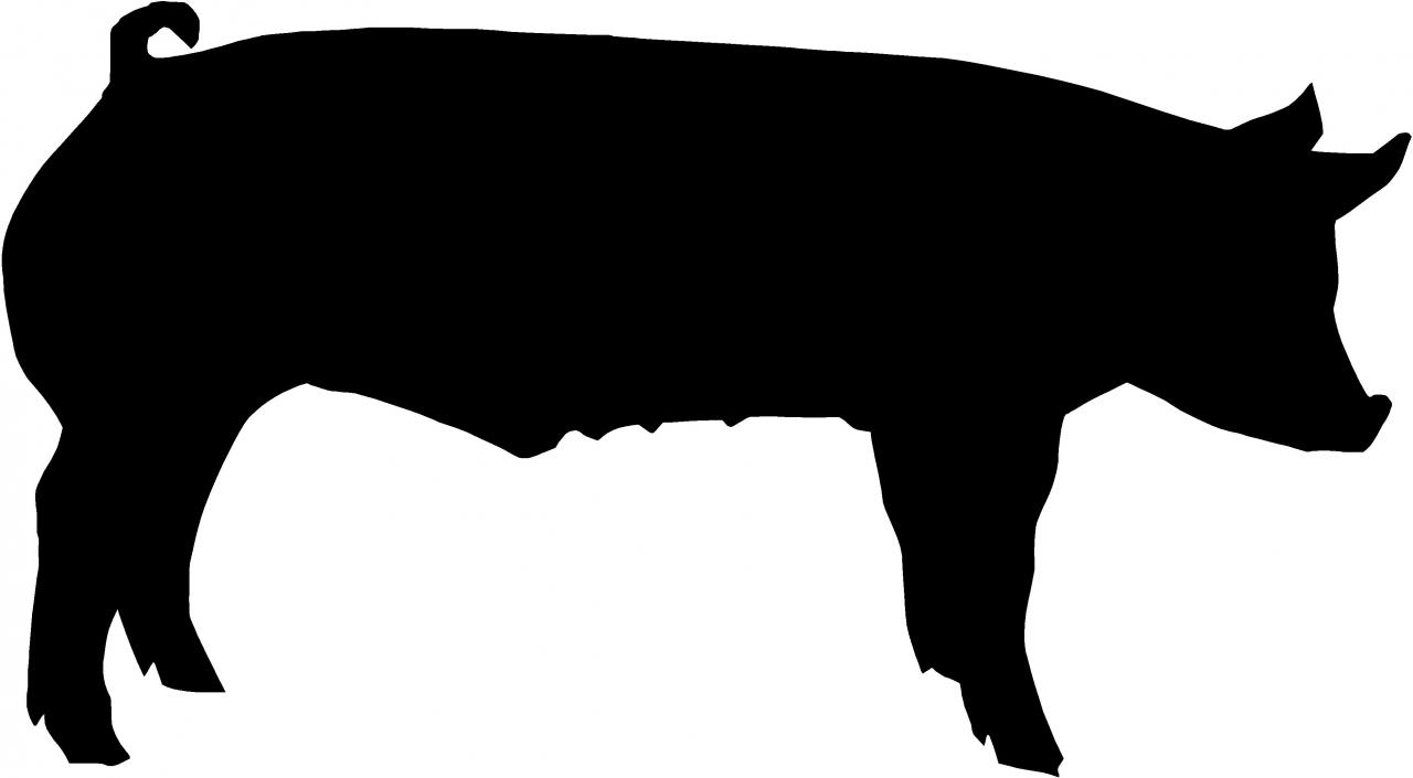 Shadow clipart pig #7