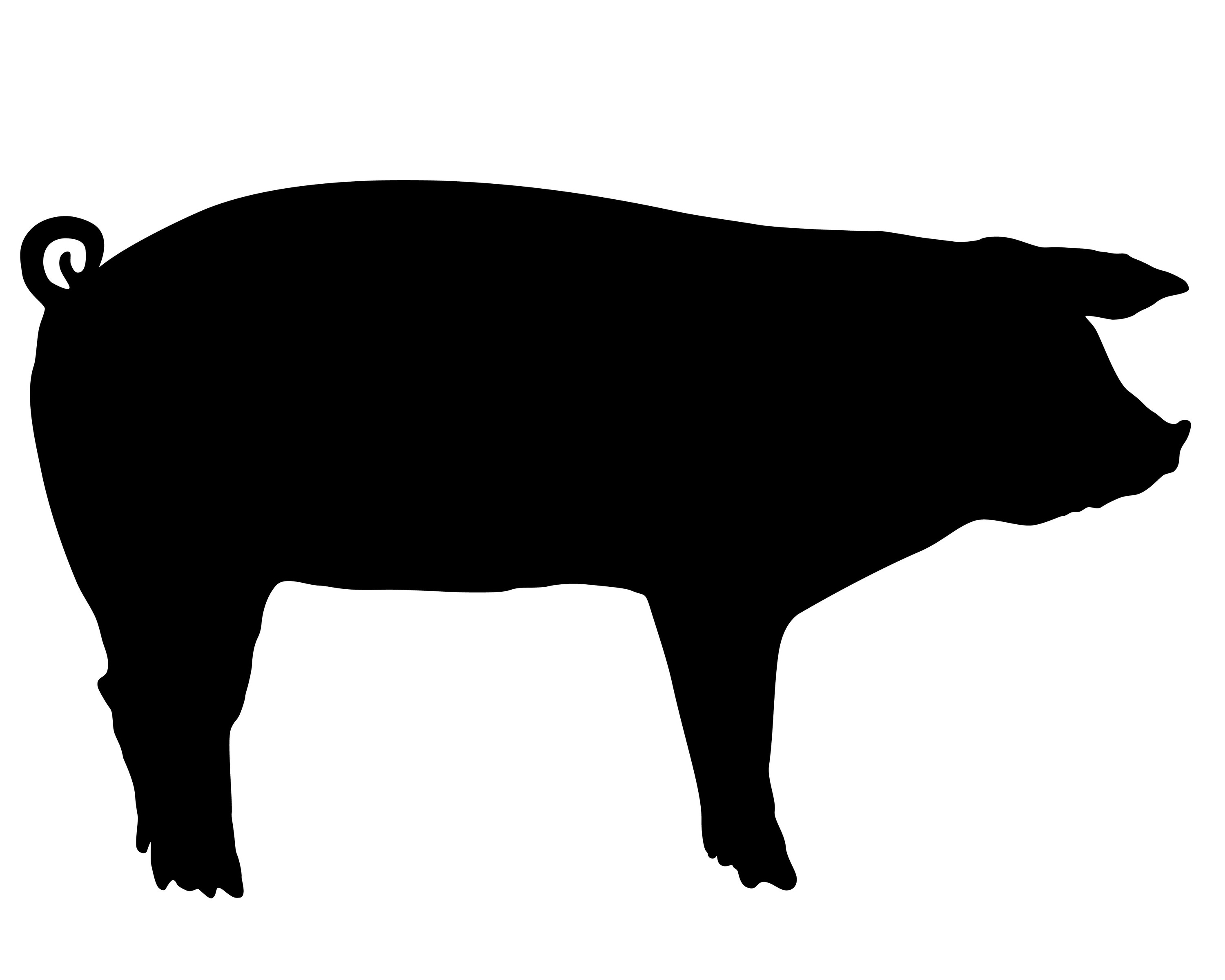 Pork clipart farm pig Versions Download free clip silhouette