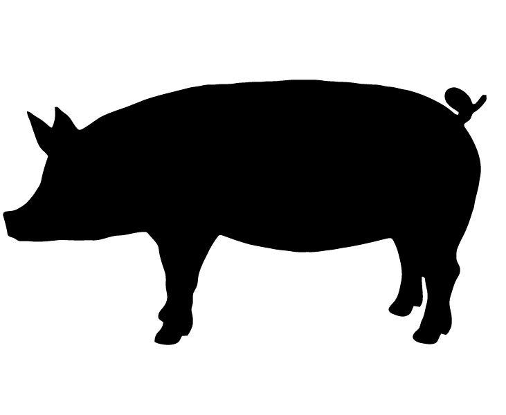 Shadow clipart pig #8