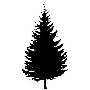 Shaow clipart pine tree Silhouette pine art silhouette tree