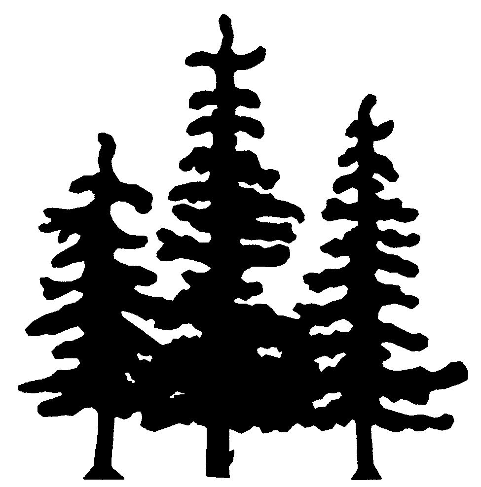 Shaow clipart pine tree Rc81 Silhouette trees silhouette Drawings