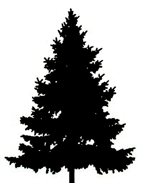 Shaow clipart pine tree Clipart Clip tree ideas Art