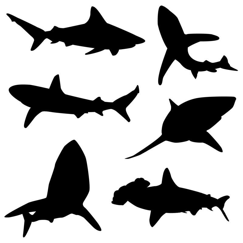 Shaow clipart shark Art vector Clip Silhouette Free