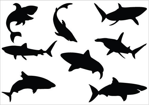 Shaow clipart shark  Shark graphics stencils Vector