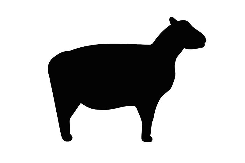 Sheep clipart shadow #4