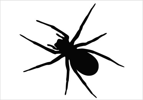 Bugs clipart spider Clipart Silhouette 501x352  Spider
