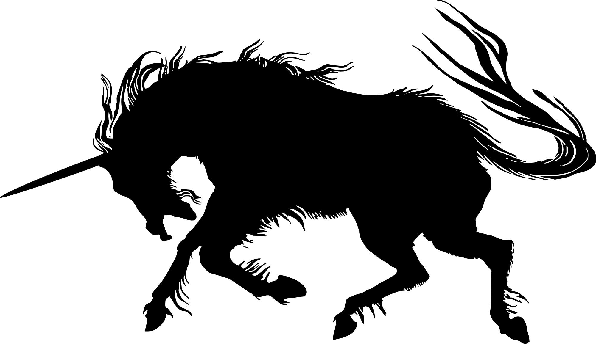 Shadow clipart unicorn #6