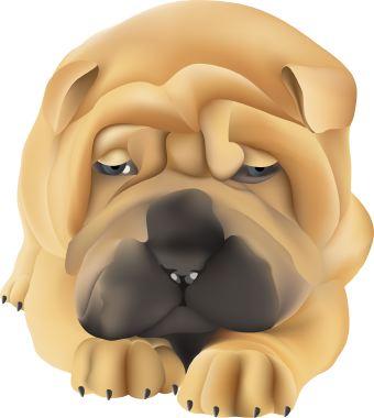 Shar Pei clipart Pei Dog clip art