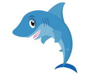 Shark clipart Art Size: Shark Clip Illustrations