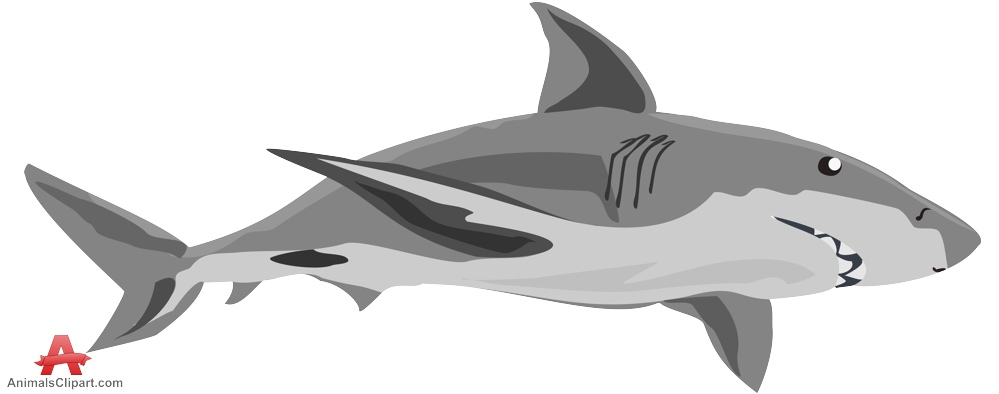 Shark clipart Nice clipart com clipart Cliparting