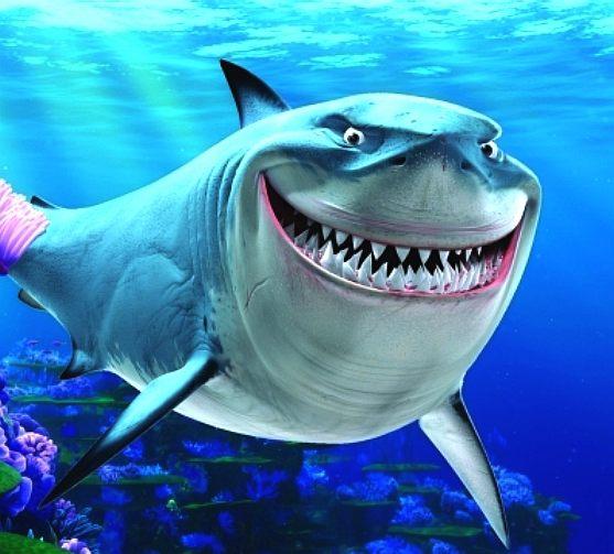 Shark clipart bruce #8